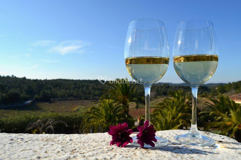 Vistas masía mb wine resort