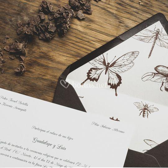 Invitación clásica insectos
