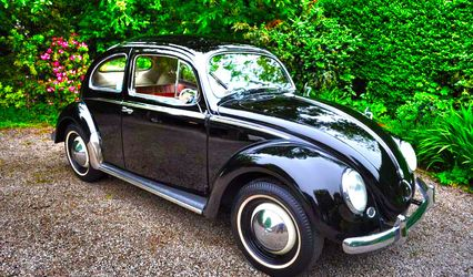 Beetlecars