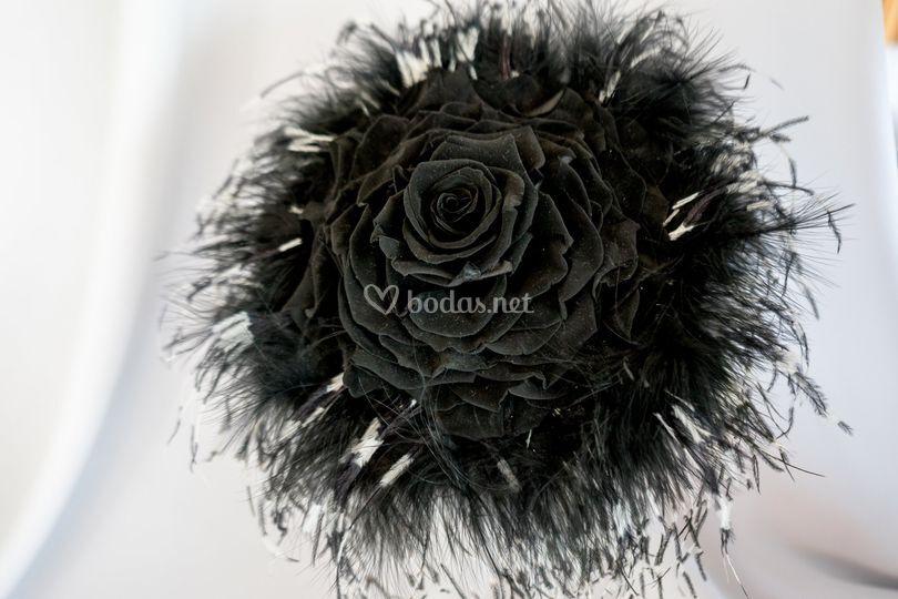 Rosmelia negra