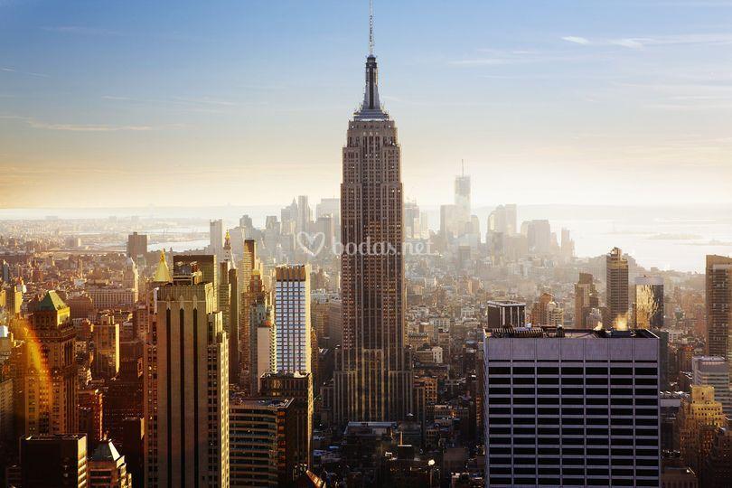 Especializados en Nueva York