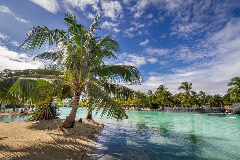 Disfruta del Caribe