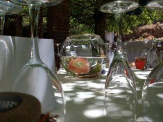 Celebración en terraza y jardín