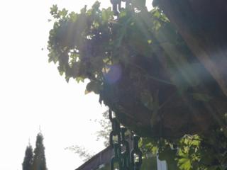 Aitzpea y Eriz - Tráiler