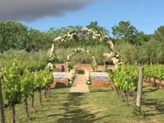 Ceremonia en las viñas