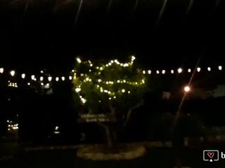 Nueva iluminación de la carpa y jardín