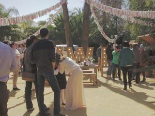 The Wedding Brunch