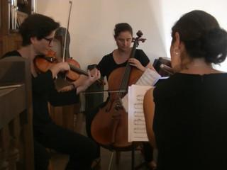 Gabriel's Oboe - E.Morricone