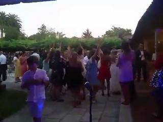 ZeppelinSound - Discotecas Móviles