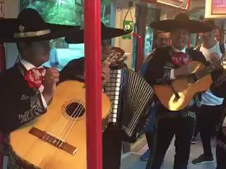 Mariachis Internacional Costa del Sol