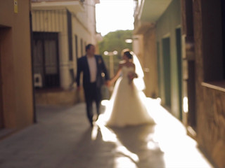 Roman & Elena wedding video
