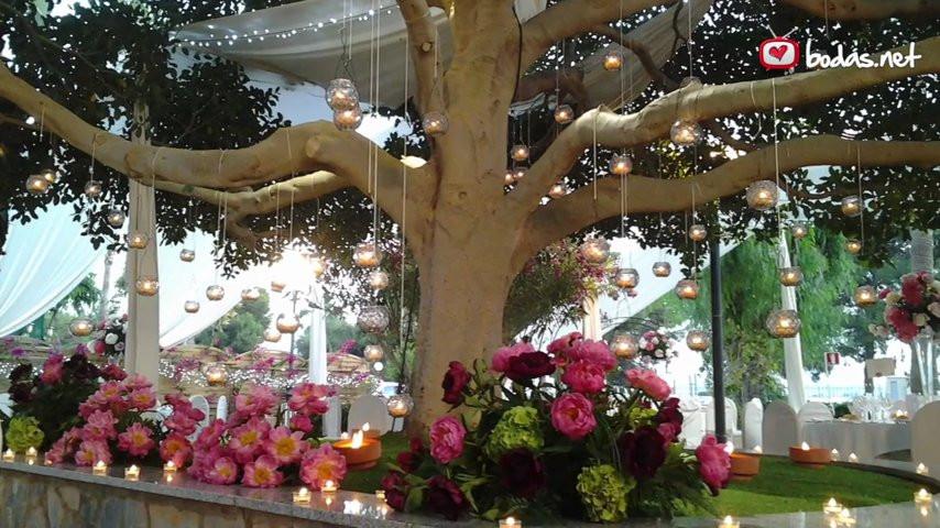 Jard n bot nico celebraciones jard n bot nico for Bodas en el jardin botanico