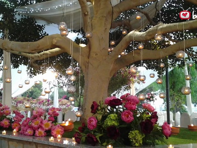 Jard n bot nico celebraciones for Boda en el jardin botanico