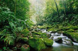 Luna de miel en Costa Rica: 10  tips que no debes perderte