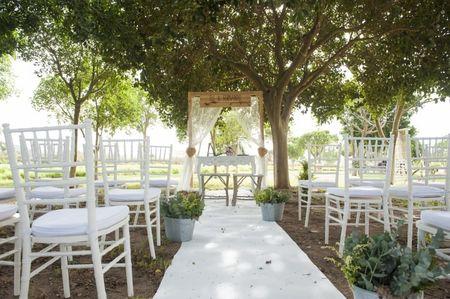 Ideas de decoraci�n para bodas al aire libre