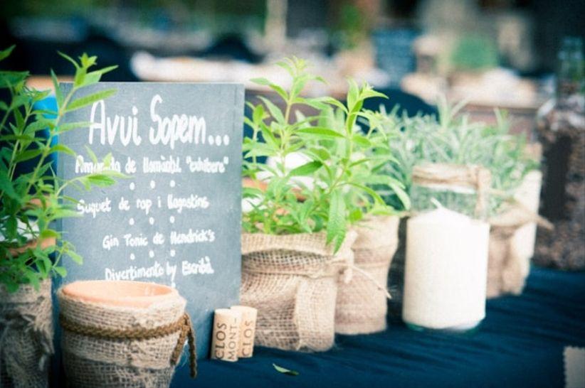 Ambienta tu boda con plantas arom ticas for Asociacion de plantas aromaticas
