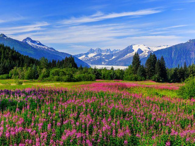 ¡Viva la aventura! Luna de miel en Alaska