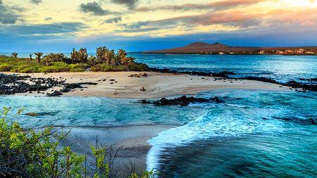 Luna de miel en las islas Galápagos: un viaje al fin del mundo