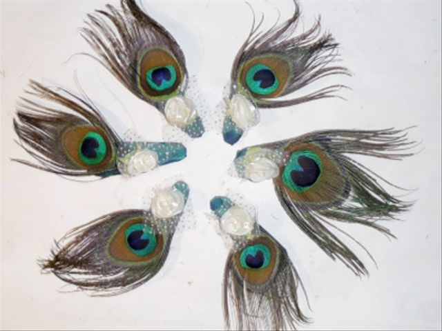 Tocados pluma como detalle de boda