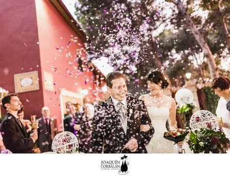 La boda de Patricia y Dani en Masía Virgen de Aguas Vivas