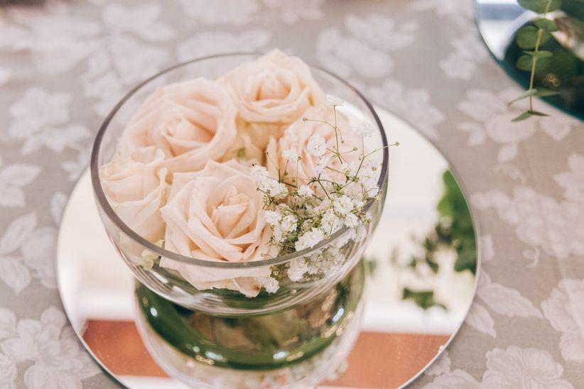 Rose Crenes Fotografía