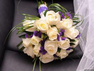 Flores por Impulso 3