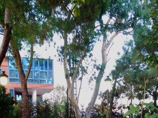 Restaurante El Jardín del Mesonero 4