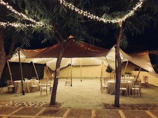 Elastic Tents 1