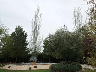 Jardín Casa Rosita 3