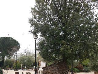 Jardín Casa Rosita 4