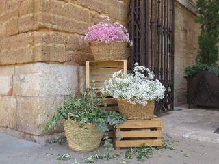 Floristería SanBlas 2