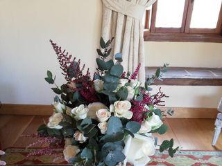 Bonsai Floristas 2