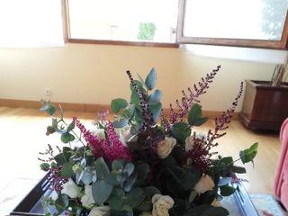 Bonsai Floristas 3
