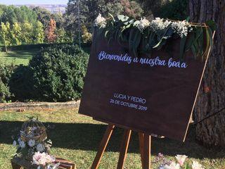 Llévenes Wedding & Event Planner 3