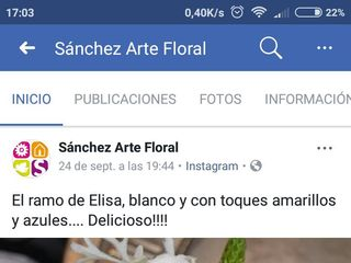 Sánchez Arte Floral 7