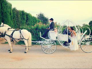 Dynamic Casaments 4