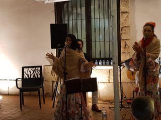 Flamenco Pura sangre 5