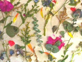 Las Flores de Greta 1