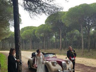 Magistral Royal Cars 2