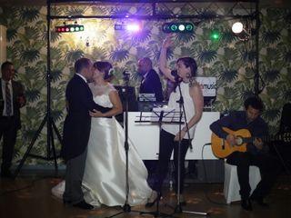 Flamenco Konfusión 2