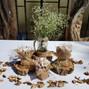 La boda de Cotrina Cuello y Omicrón 14