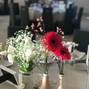 La boda de Carmen y Hacienda Tierra Blanca 5