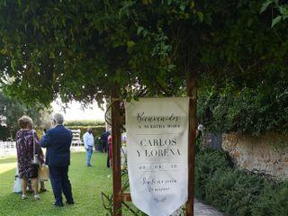 Arcoiris Floristas 4