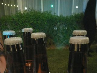 Cerveza Artesana Avanzadilla 1