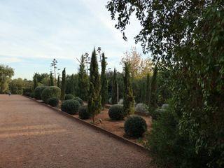 Hacienda Molinillos 3