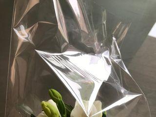 Flor Birlanga 4