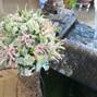 Jardinería Las Jaras 22