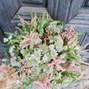 Jardinería Las Jaras 23