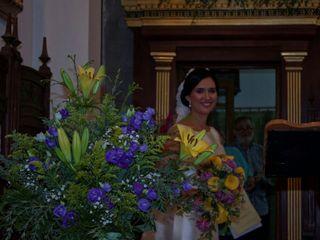 De balcones y flores 1
