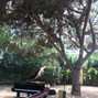 La boda de Marta C. y El Piano de tu Boda 10
